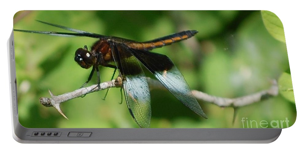 Digitall Photo Portable Battery Charger featuring the photograph Dragon Fly by David Lane