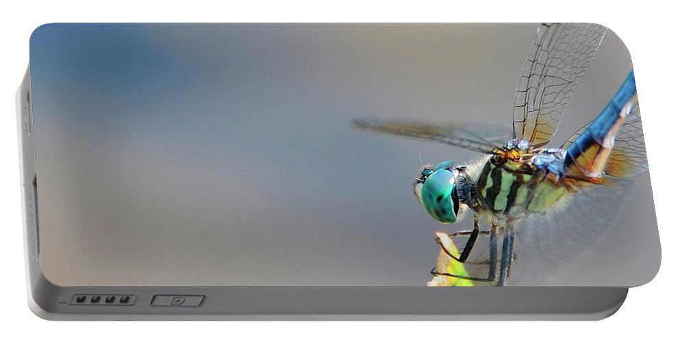Insect Portable Battery Charger featuring the photograph Dragon Flyer by David Arment