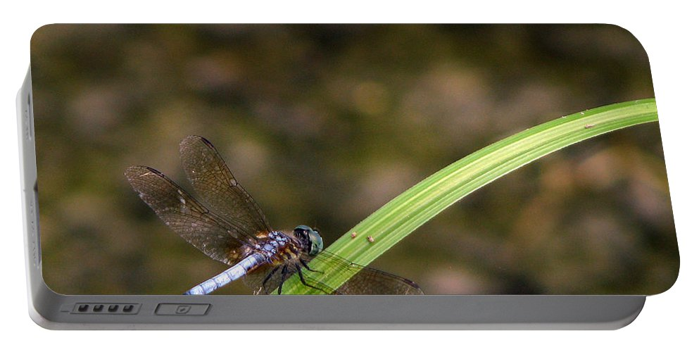 Dragonfly Portable Battery Charger featuring the photograph Dragonfly by Amanda Barcon