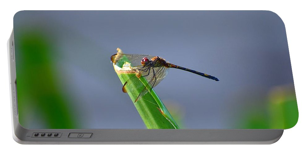 Dragonfly Portable Battery Charger featuring the photograph Dragonfly In Costa Rica by Richard Cheski