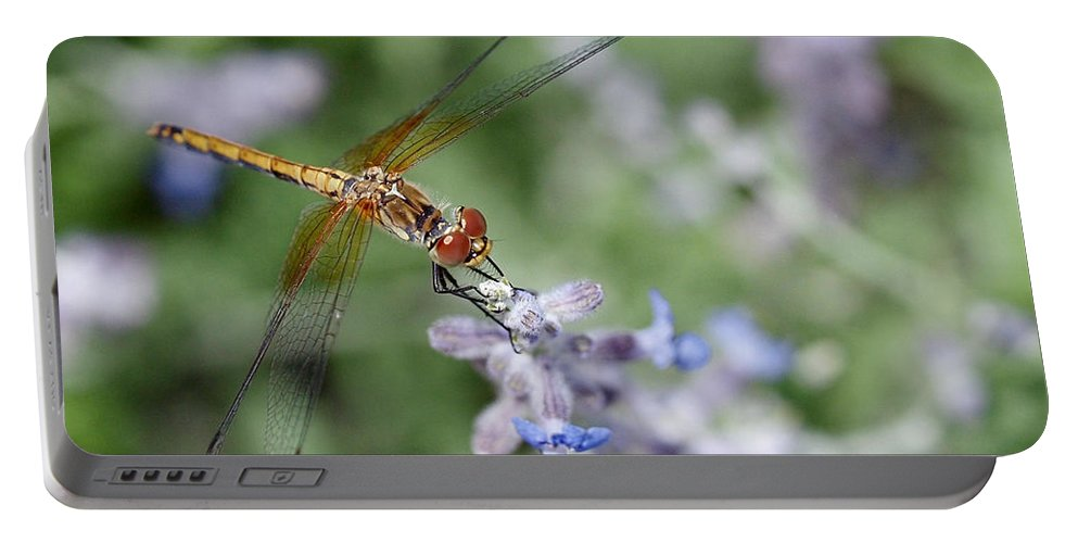 Dragonfly Portable Battery Charger featuring the photograph Dragonfly In The Lavender Garden by Rona Black