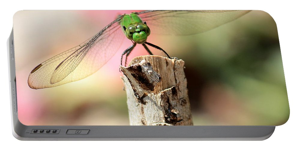 Dragonfly Portable Battery Charger featuring the photograph Dragonfly In The Petunias by Carol Groenen