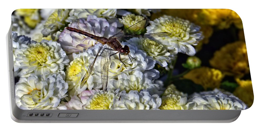 Floral Portable Battery Charger featuring the photograph Dragonfly On White Mums by Catherine Melvin
