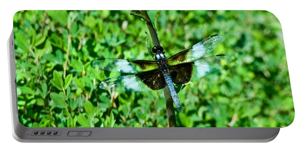 Dragonfly Portable Battery Charger featuring the photograph Dragonfly Resting On Stem by Douglas Barnett