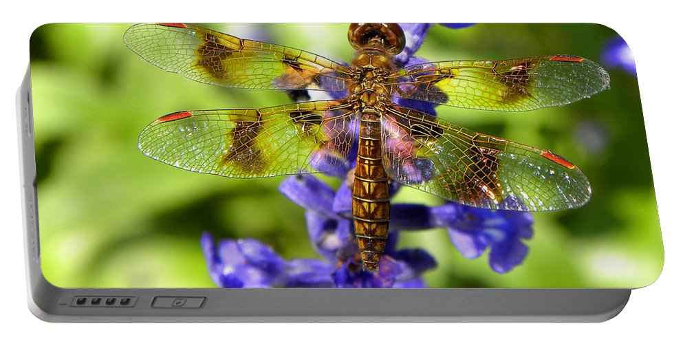 Dragonfly Portable Battery Charger featuring the photograph Dragonfly by Sandi OReilly