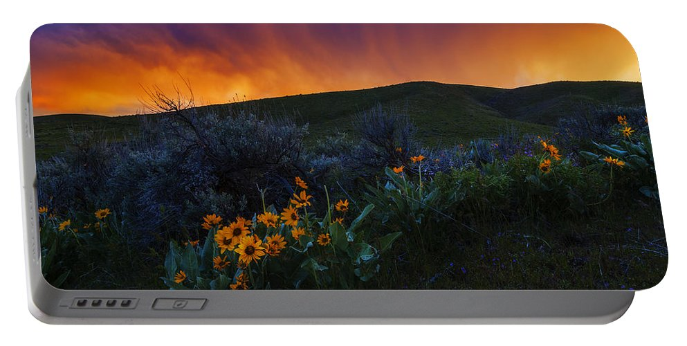 Balsam Roots Portable Battery Charger featuring the photograph Dramatic Spring Sunset In Boise Idaho Usa by Vishwanath Bhat