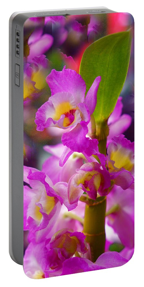 Orchids Portable Battery Charger featuring the photograph Dream Of Spring by Byron Varvarigos