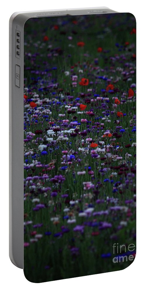Flowers Portable Battery Charger featuring the photograph Dreaming In Color by Lisa Porier