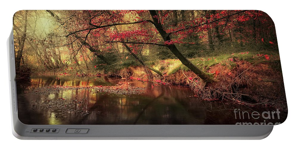 Svetlana Sewell Portable Battery Charger featuring the photograph Dreamy Autumn Forest by Svetlana Sewell