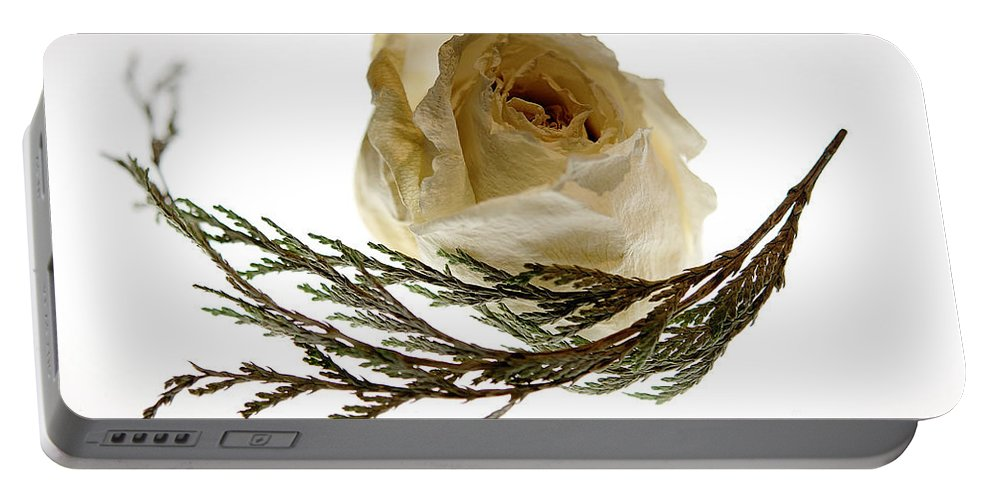 Rose Portable Battery Charger featuring the photograph Dried White Rose by Lois Bryan