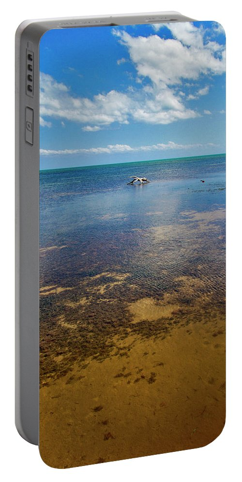 Blue Portable Battery Charger featuring the photograph Driftwood At Low Tide In Key West by Bob Slitzan