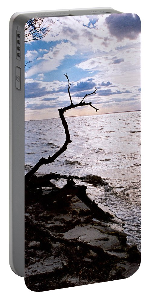 Barnegat Portable Battery Charger featuring the photograph Driftwood Dragon-barnegat Bay by Steve Karol