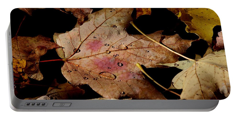 Droplet Portable Battery Charger featuring the photograph Droplets On Fallen Leaves by Doris Potter
