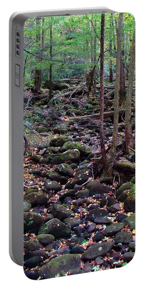 River Portable Battery Charger featuring the photograph Dry River Bed- Autumn by Nancy Mueller