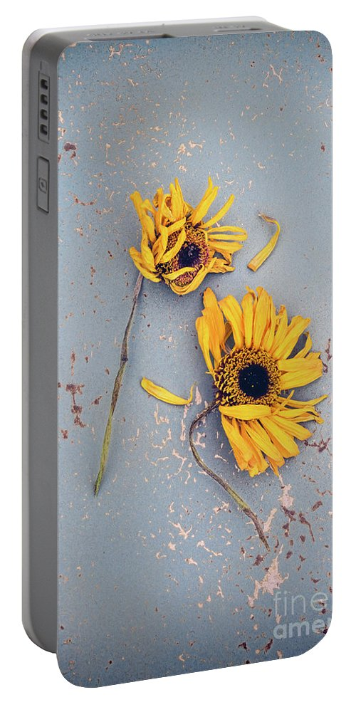 Flowers Portable Battery Charger featuring the photograph Dry Sunflowers On Blue by Jill Battaglia
