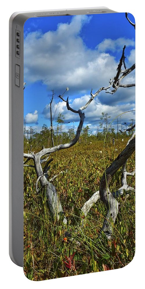 Attractive Portable Battery Charger featuring the photograph Dry Tree by Vadzim Kandratsenkau