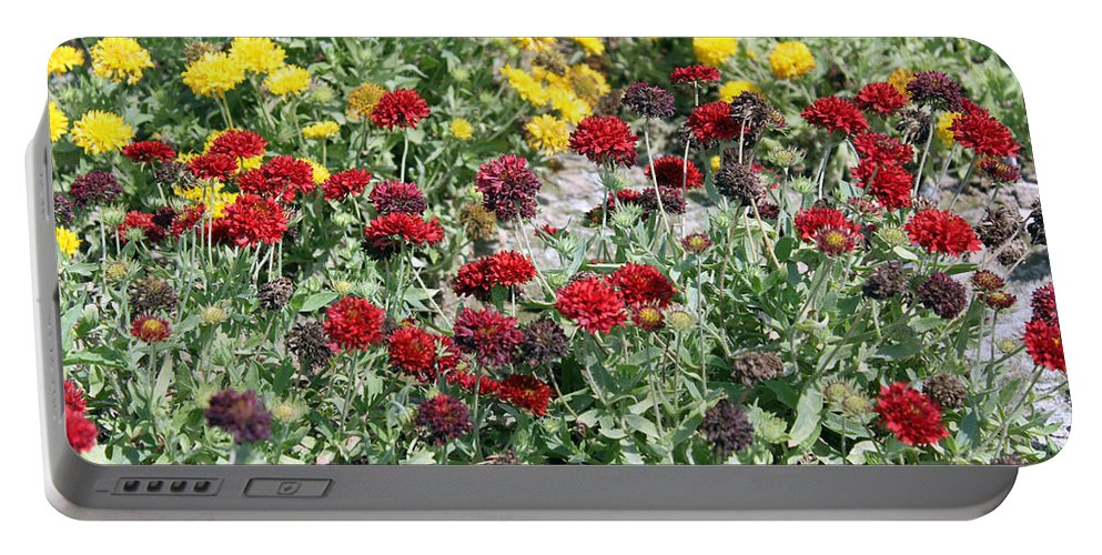 Flower Portable Battery Charger featuring the photograph Dubai Flowers by Munir Alawi