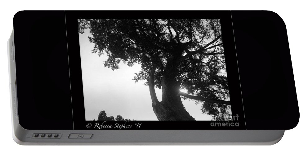 Dubignon Portable Battery Charger featuring the photograph Dubignon Tree by Rebecca Stephens