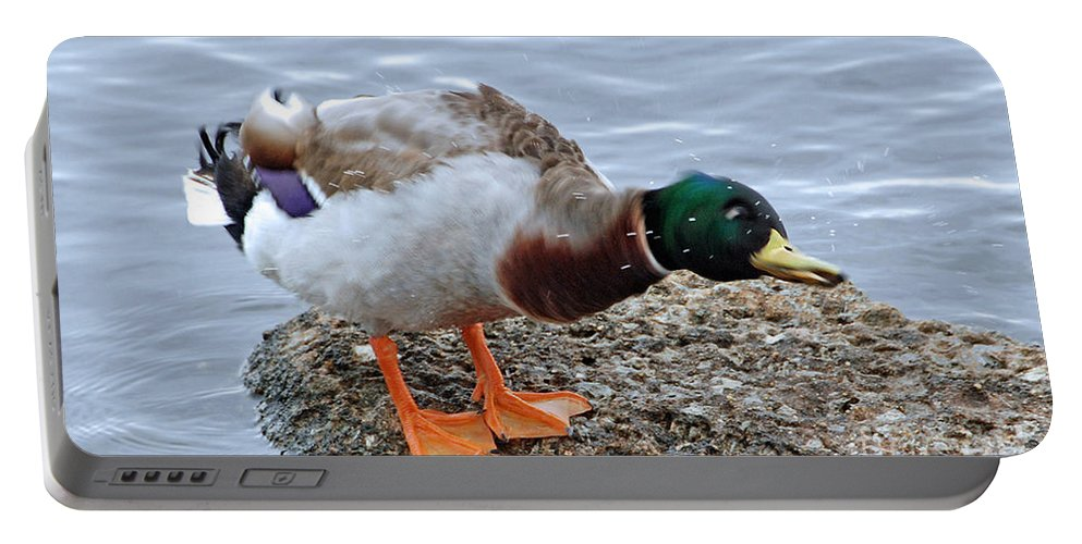 Duck Portable Battery Charger featuring the photograph Duck Bath Alantic Beaches Nc by Tommy Anderson