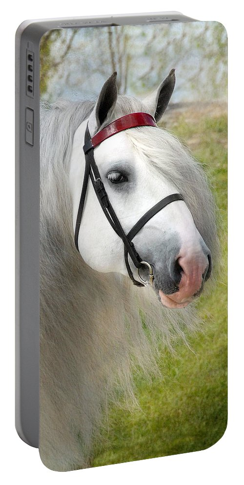 Horses Portable Battery Charger featuring the photograph Dunbrody by Fran J Scott