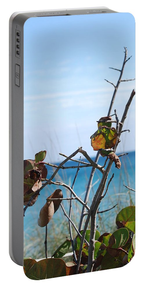 Ocean Portable Battery Charger featuring the photograph Dune Plants by Rob Hans