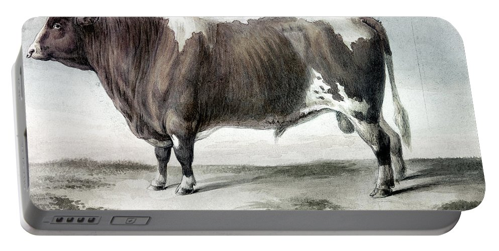 1856 Portable Battery Charger featuring the photograph Durham Bull, 1856 by Granger
