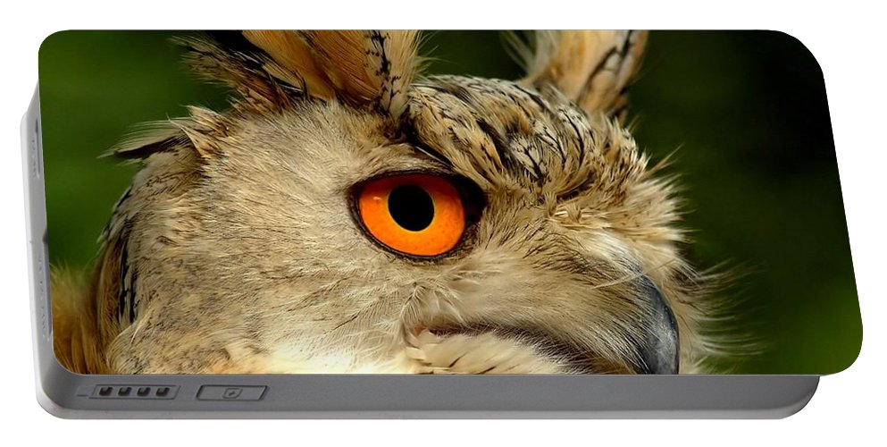 Wildlife Portable Battery Charger featuring the photograph Eagle Owl by Jacky Gerritsen