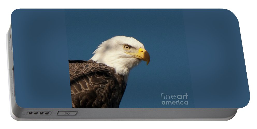 Eagle Portable Battery Charger featuring the photograph Eagle by Rod Wiens