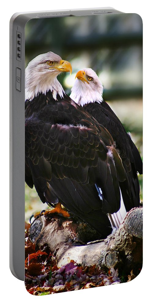 Eagles Portable Battery Charger featuring the photograph Eagles by Anthony Jones