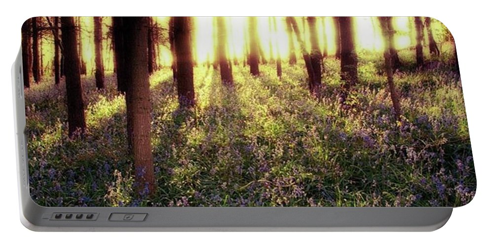 Sunrise Portable Battery Charger featuring the photograph Early Morning Amongst The by John Edwards