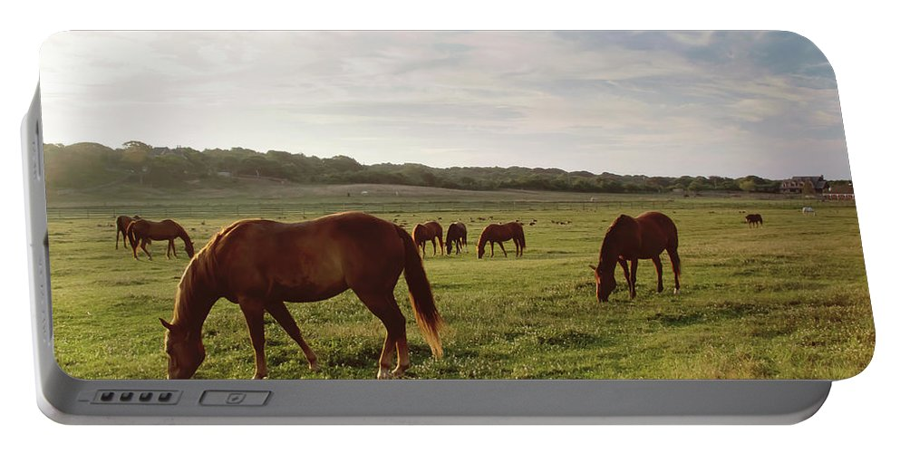 Horse Portable Battery Charger featuring the photograph Early Morning Graze by A New Focus Photography