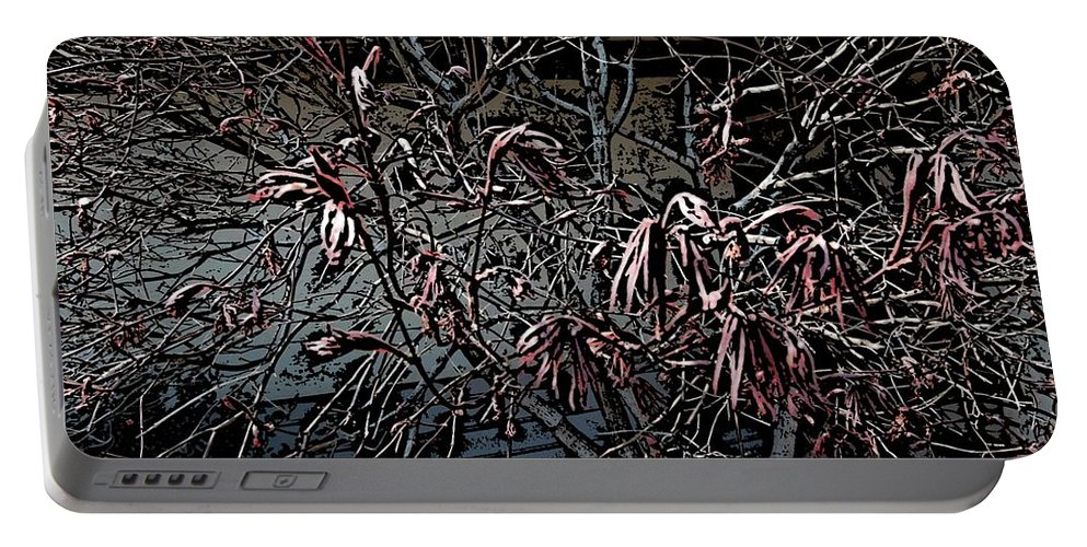 Digital Photography Portable Battery Charger featuring the digital art Early Spring Abstract by David Lane