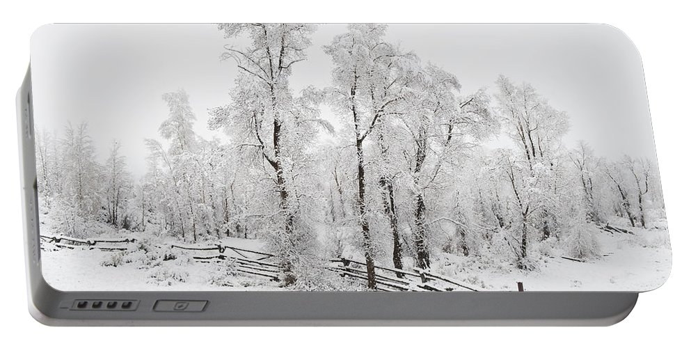 Trees Portable Battery Charger featuring the photograph Early Spring Snow by John Christopher