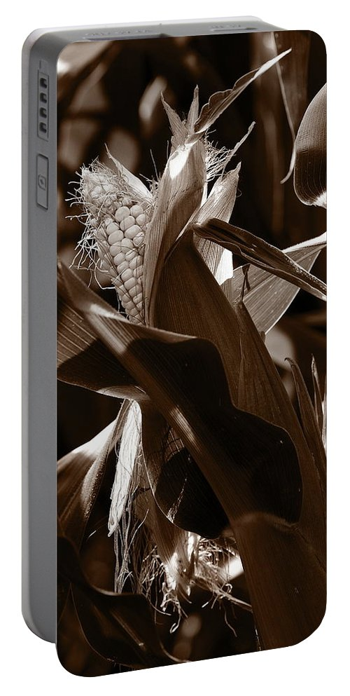 Farm Portable Battery Charger featuring the photograph Ears To You Corn - Sepia by Angela Rath