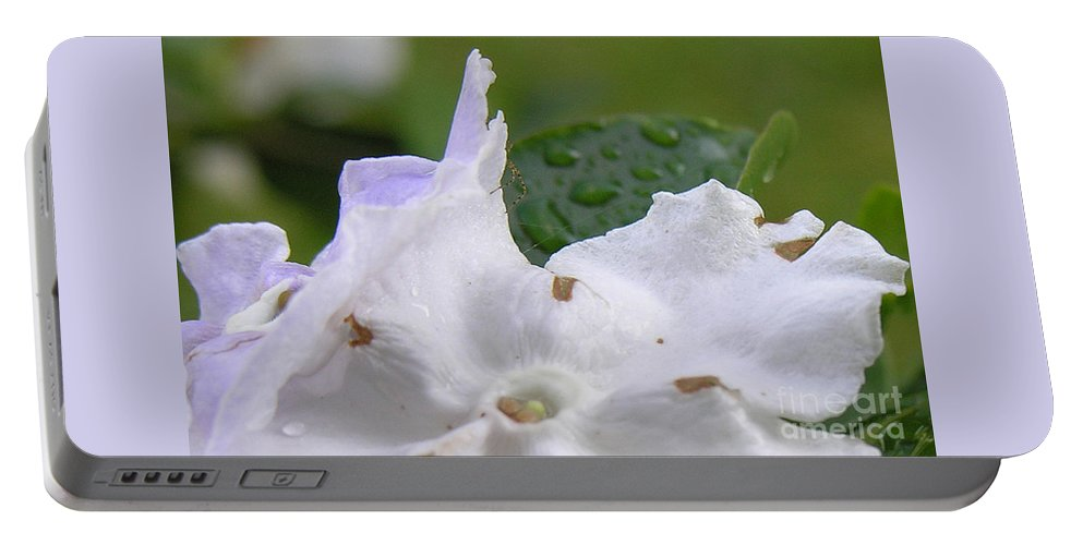 Flower Portable Battery Charger featuring the photograph Easter Surprise by Richard Rizzo