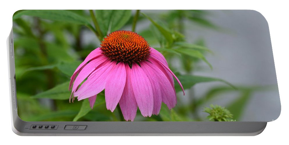 Echinacea 16-01 Portable Battery Charger featuring the photograph Echinacea 16-01 by Maria Urso