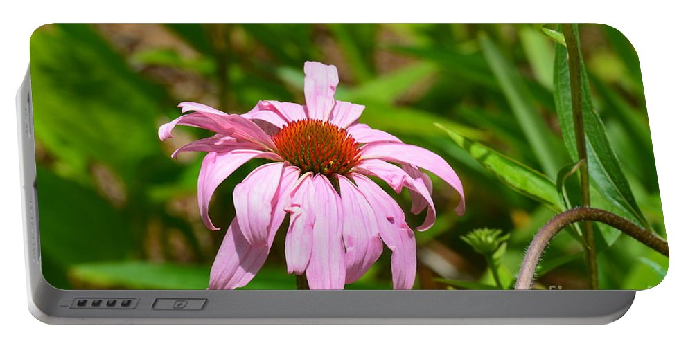 Echinacea 16-02 Portable Battery Charger featuring the photograph Echinacea 16-02 by Maria Urso