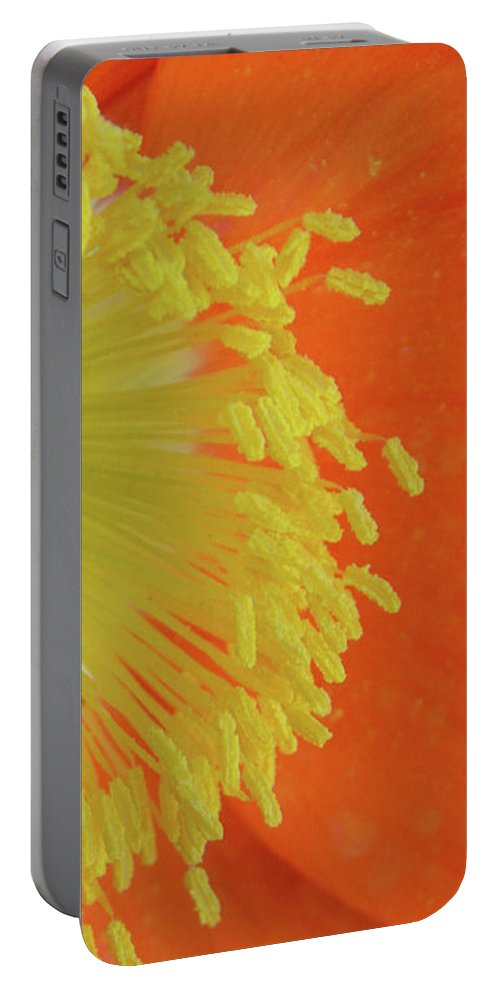 Poppy Portable Battery Charger featuring the photograph Edge Of The Sun by Donna Blackhall