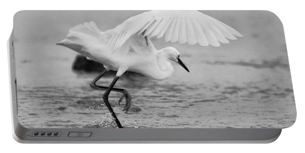 Portable Battery Charger featuring the photograph Egret Hunting In Black And White by Angela Rath