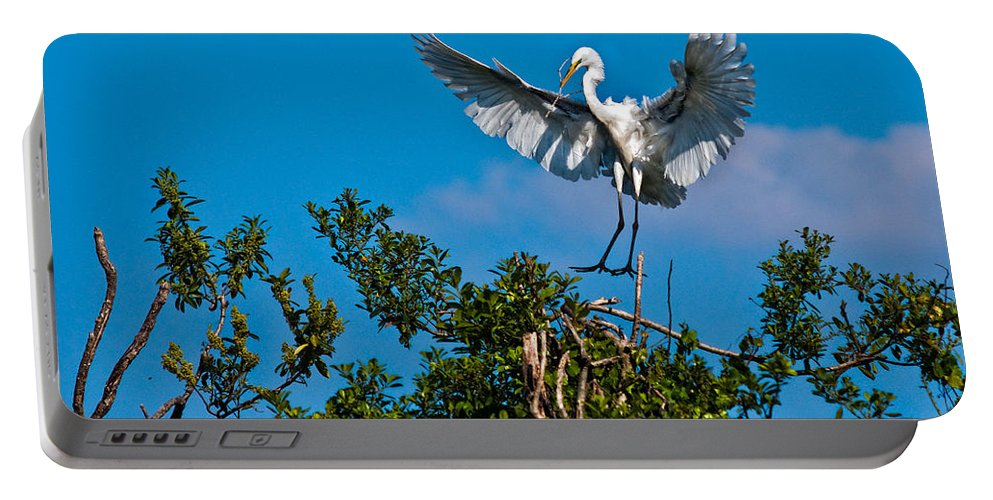 Avian Portable Battery Charger featuring the photograph Egret Landing by Christopher Holmes