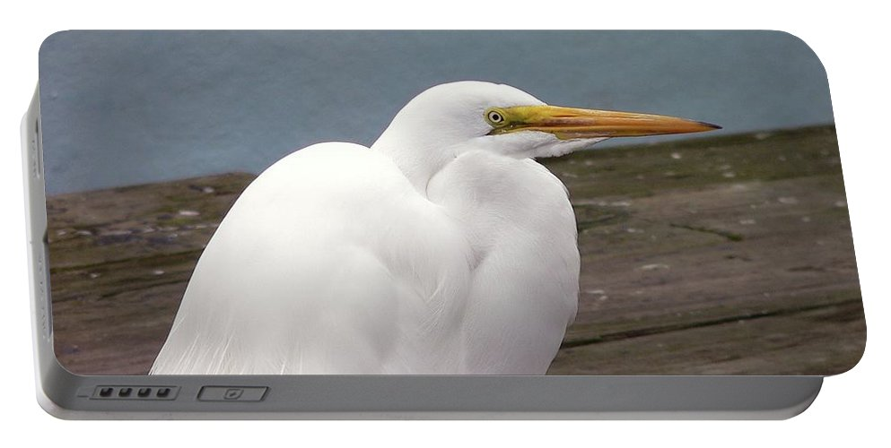 Great Egret Portable Battery Charger featuring the photograph Egret On The Dock by Al Powell Photography USA