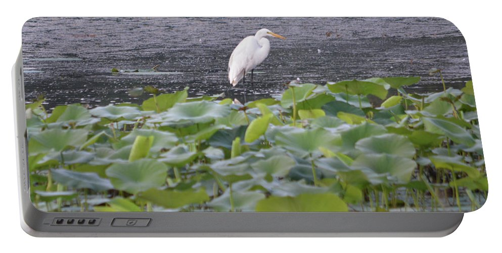 Egret Standing In Lake Portable Battery Charger featuring the photograph Egret Standing In Lake by Ruth Housley