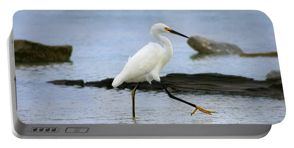 Portable Battery Charger featuring the photograph Egret Step by Angela Rath