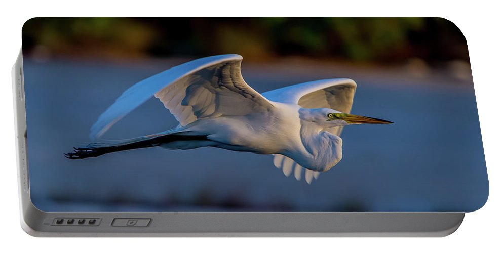Florida Portable Battery Charger featuring the photograph Egret Sunset by David F Hunter