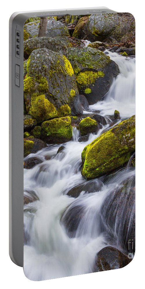 Yosemite Portable Battery Charger featuring the photograph Electric Green by Anthony Michael Bonafede