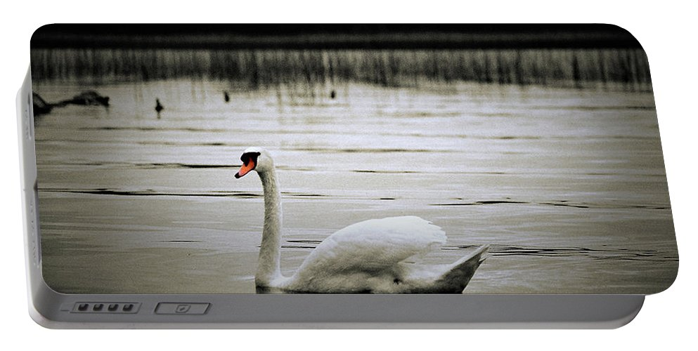 Lake Portable Battery Charger featuring the photograph Elegance In Motion by MichealAnthony