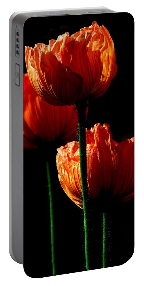 Photograph Portable Battery Charger featuring the photograph Elegance by Stephie Butler