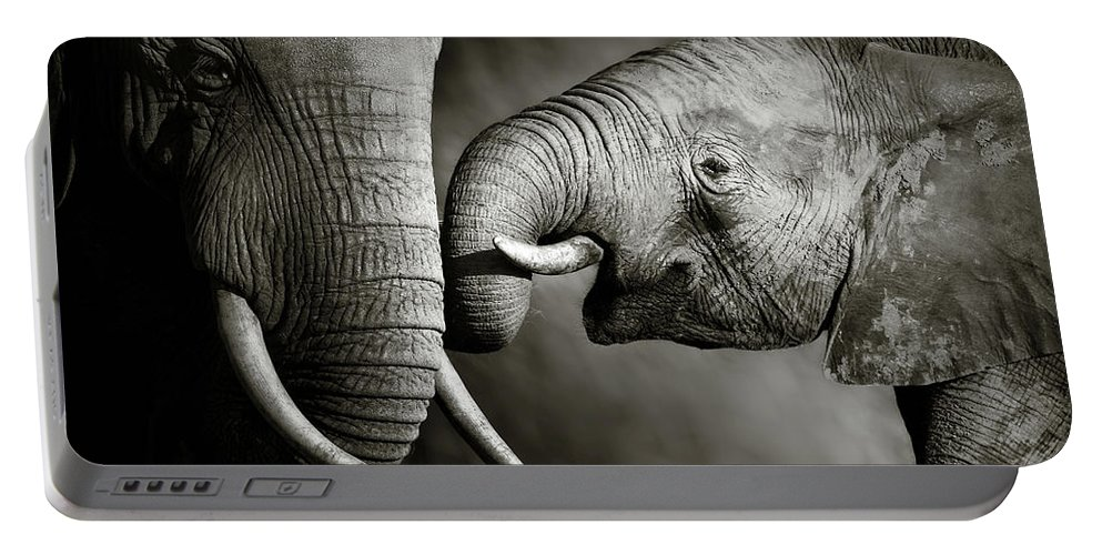 Elephant; Interact; Touch; Gently; Trunk; Young; Large; Small; Big; Tusk; Together; Togetherness; Passionate; Affectionate; Behavior; Art; Artistic; Black; White; B&w; Monochrome; Image; African; Animal; Wildlife; Wild; Mammal; Animal; Two; Moody; Outdoor; Nature; Africa; Nobody; Photograph; Addo; National; Park; Loxodonta; Africana; Muddy; Caring; Passion; Affection; Show; Display; Reach Portable Battery Charger featuring the photograph Elephant affection by Johan Swanepoel