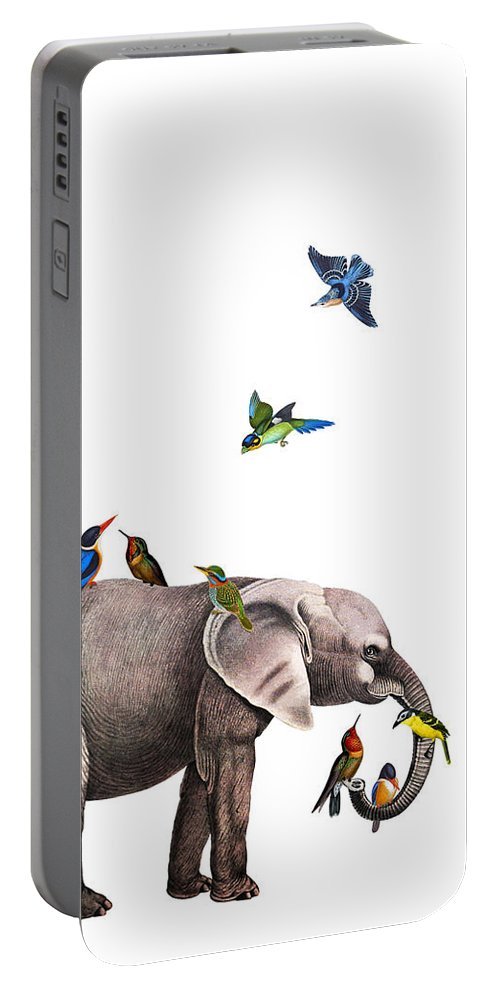 Elephant Portable Battery Charger featuring the digital art Elephant With Birds Illustration by Madame Memento