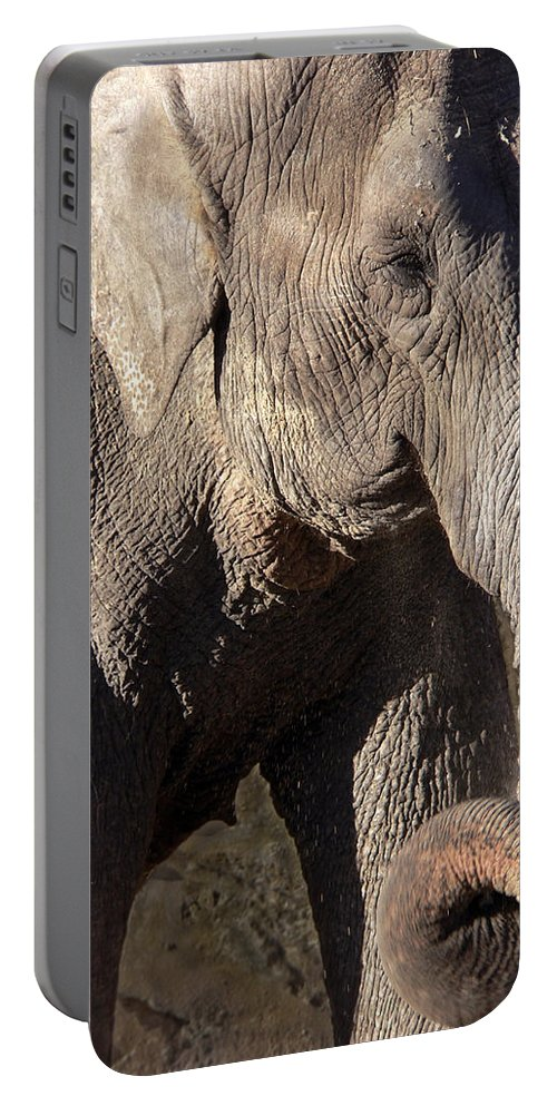 Elephant Portable Battery Charger featuring the photograph Elephant by Steven Sparks